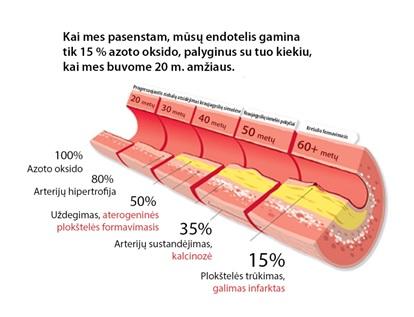 erekcijos profilaktikai erekcijos vystymosi mechanizmai