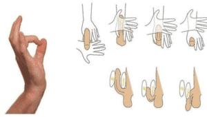 struktūra varpos erekcija